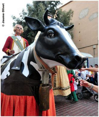 Vaca Xula de Vacarisses